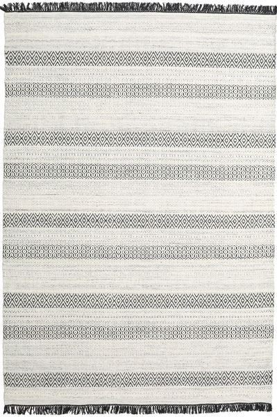 Hedda - Hellgrau Teppich  220X320 Echter Moderner Handgewebter Hellgrau/Beige (Wolle, Indien)