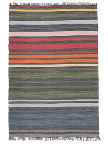 Rainbow Stripe - Grau Teppich  160X230 Echter Moderner Handgewebter Hellgrau/Dunkelgrau (Baumwolle, Indien)