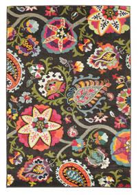 Allegra - Dunkel Teppich  160X230 Moderner Dunkelgrau ( Türkei)