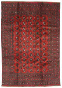 Afghan Teppich  200X288 Echter Orientalischer Handgeknüpfter Dunkelrot/Dunkelbraun (Wolle, Afghanistan)