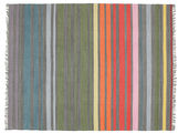 Rainbow Stripe - grau